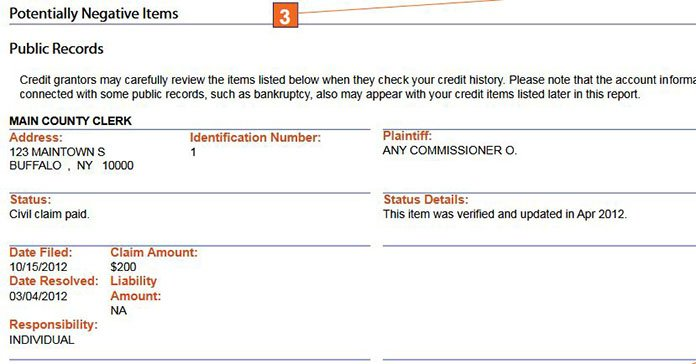 screenshot public records credit report